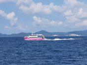 다이버들의 천국 필리핀 민도르 섬에 다녀왔습니다